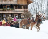 Horse-drawn sleigh rides in Altenmarkt